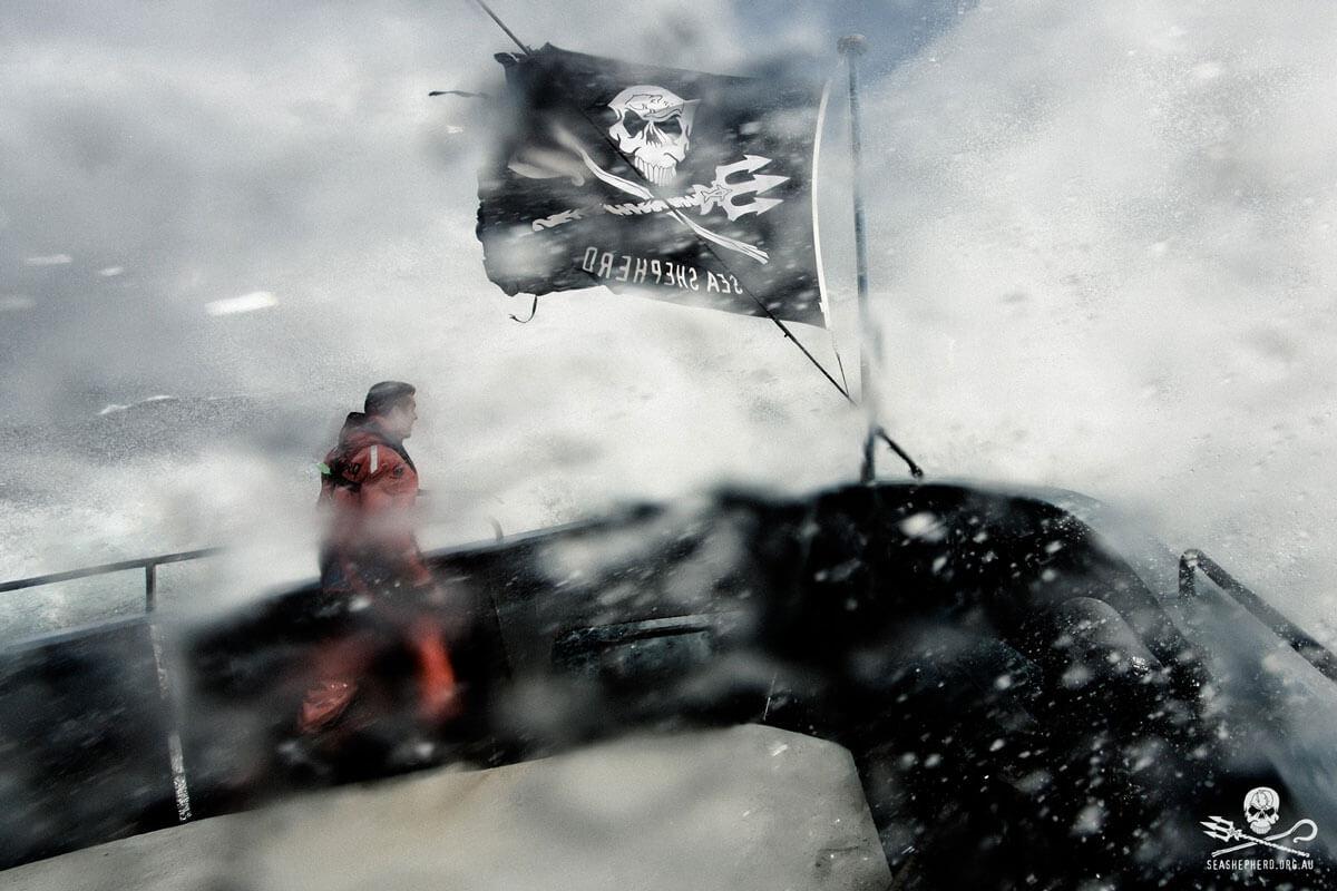 CCON | COMIC CON STUTTGART 2020 | Infos | Sea Shepherd